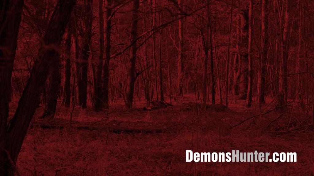 Demons Hunter Wood wallpaper